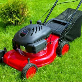Red And Black Lawnmower