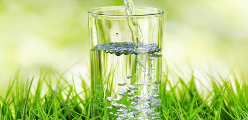 Bottled Water VS Filtered Water