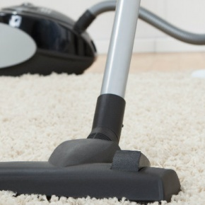 Helen And The Sebo Vacuum