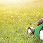 Petrol Lawnmowers Are Cool