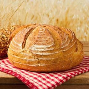 Bread In Corn Field