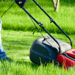 Get a Perfect Looking Lawn