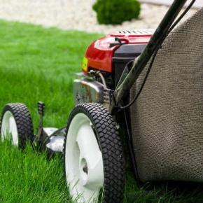 Choosing The Correct Lawnmower