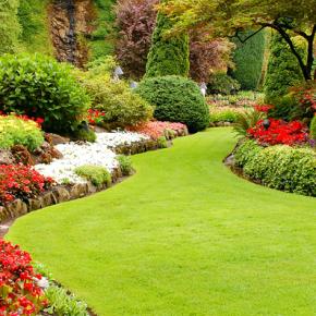 3 Key Steps to Help You Achieve a Beautiful Lawn