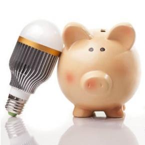 Pig Banks And Led Bulbs