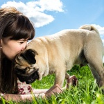 Top 3 Unusual Ways to Treat Your Pooch!