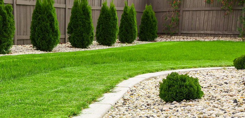Green Lawn With White Gravel Borders