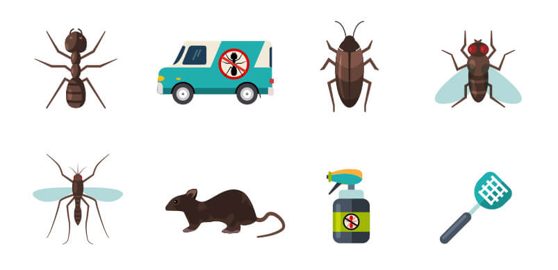 How To Avoid Pesky Summer Pests Espares