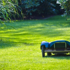Robot Lawn Mower Mowing Lawn