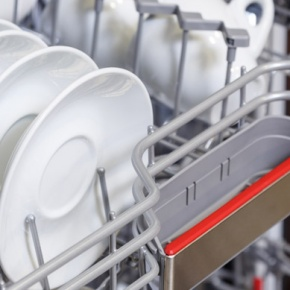 Dishwasher With White Crockery