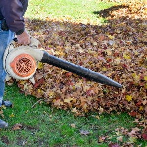 Leaf Blower Blowing Autumn Leaves
