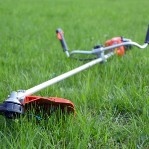 String Trimmer On Grass
