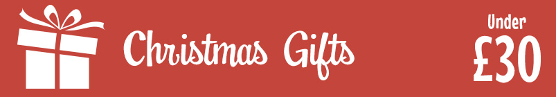 Christmas Gift Ideas Under £30 Banner