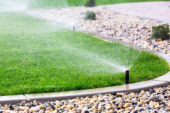 Sprinkler Water Patch Of Grass