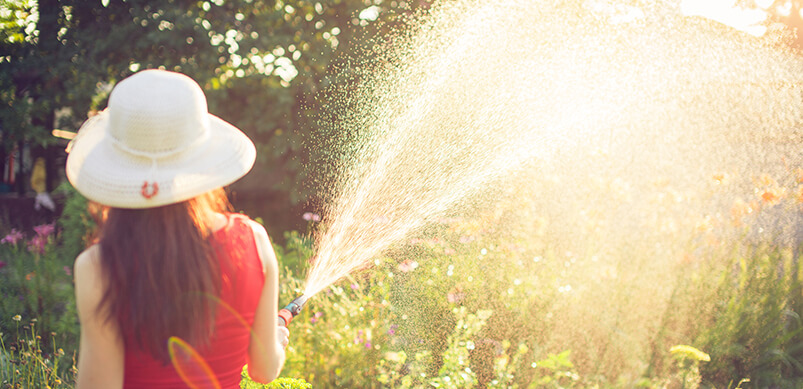 Woman With Watering Hose
