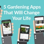 5 Gardening Apps That Will Change Your Life
