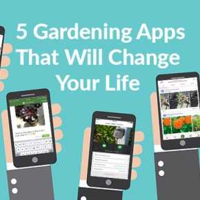 Cover Photo Five Gardening Apps