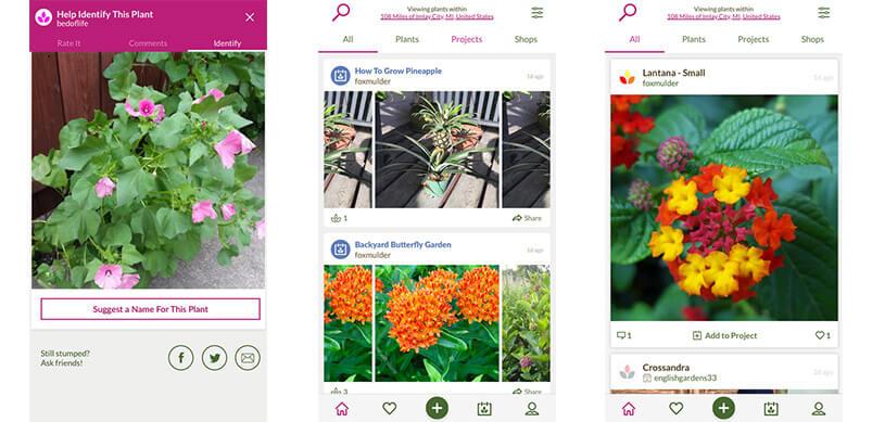 Screen Shots Of App