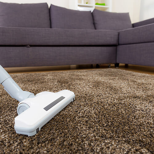 Vacuum Cleaner Cleaning Brown Carpet