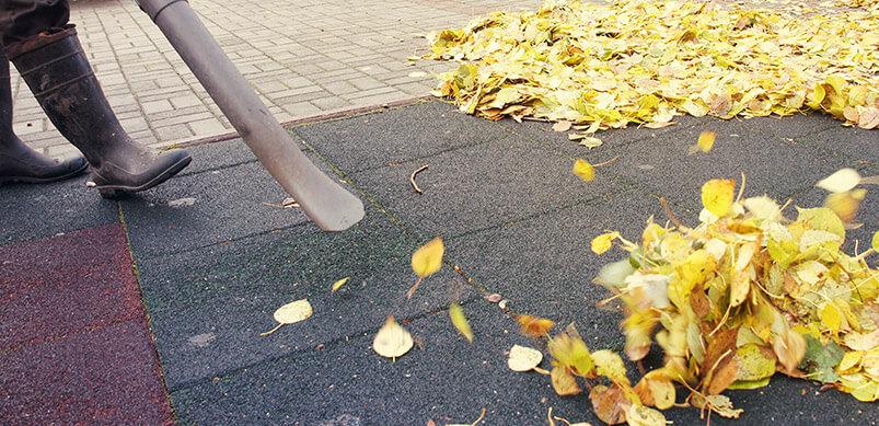Garden Vacuum Sucking Leaves