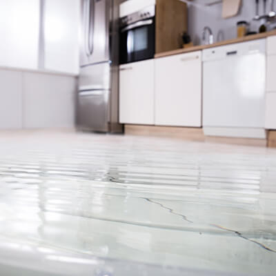 Close-up Of Wet Floor In Kitchen