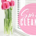 12 Appliances you Should Include in Your Spring Clean