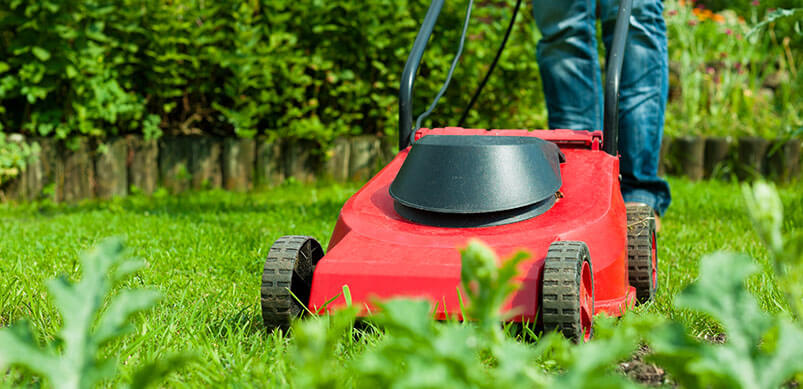 Close Up of Person Mowing Lawn In Summer