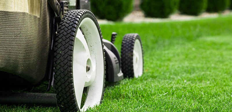 Close Up Of Lawnmower Wheels
