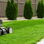How to Shape up Your Lawnmower for Spring