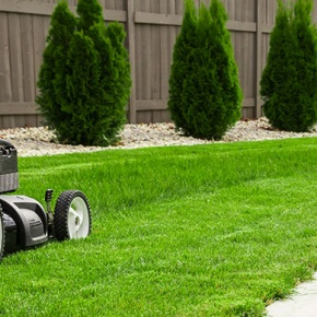 Lawn Mower Cutting Grass Garden Path