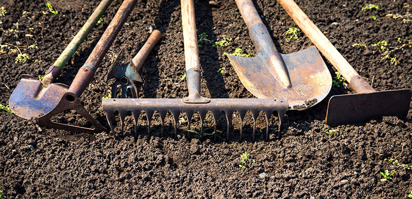 Garden Tools Lay In Row On Soil