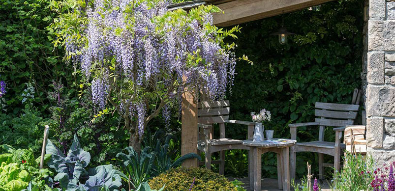 Garden With Tall Purple Flowers And Greenery