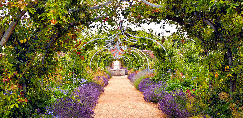 Flower Garden And Pathway Under Arch