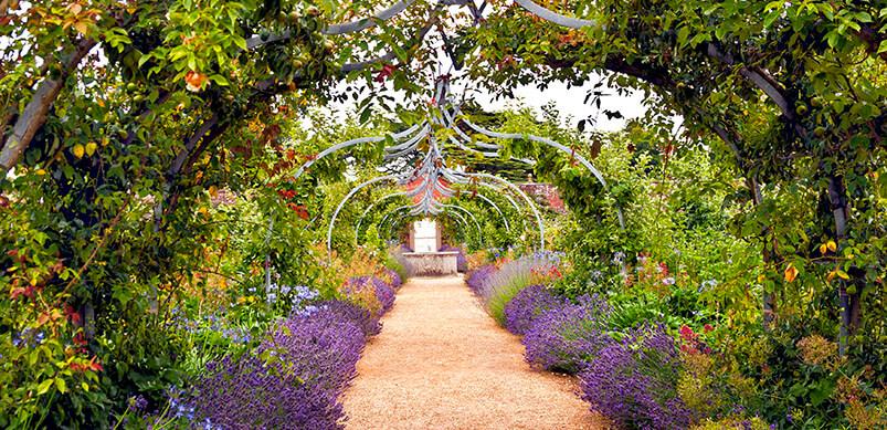 Flower Garden And Pathway Under Arch