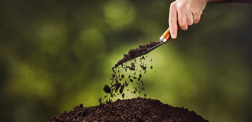 Hand Pouring Fertiliser On To Soil