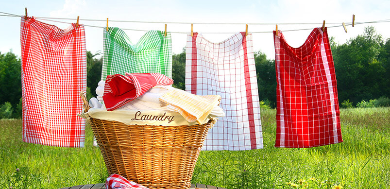Washing Line In Garden With Basket
