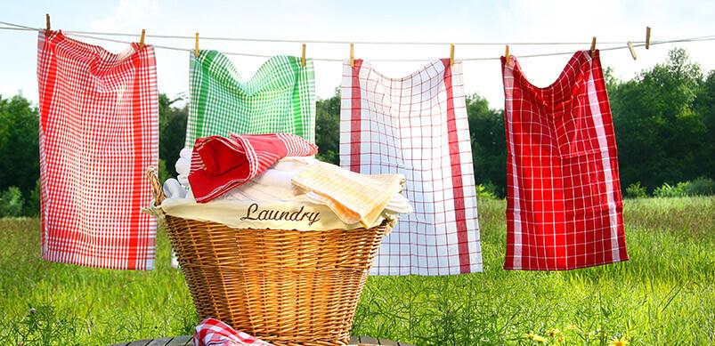 Washing Line In Garden With Basket