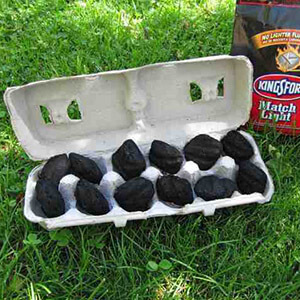 Egg Carton With BBQ Coal