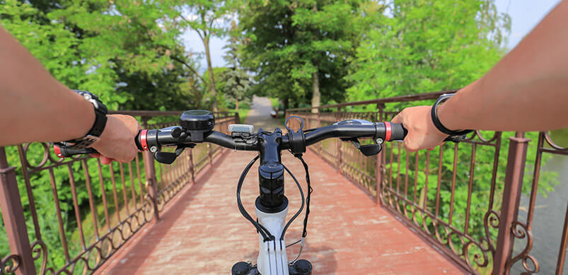 Person's View From Bike Of Path And Trees