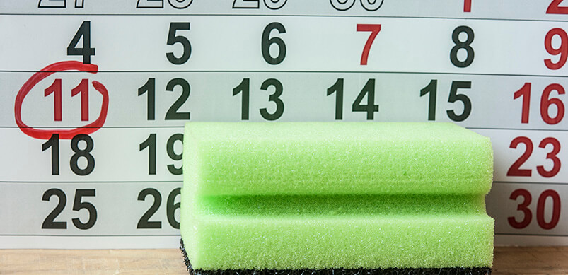 Calendar With Circled Days And Sponge