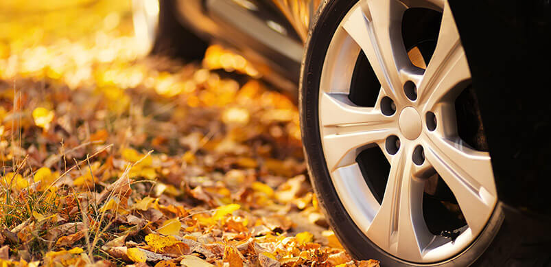 Close Up On Car Wheel In Autumn Leaves