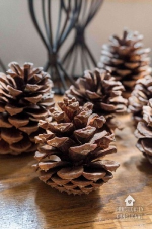 Cinnamon Scented Pinecones On Table