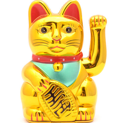 Chinese Gold Cat On White Background