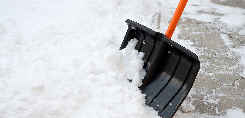 Snow Shovel Clearing Snow