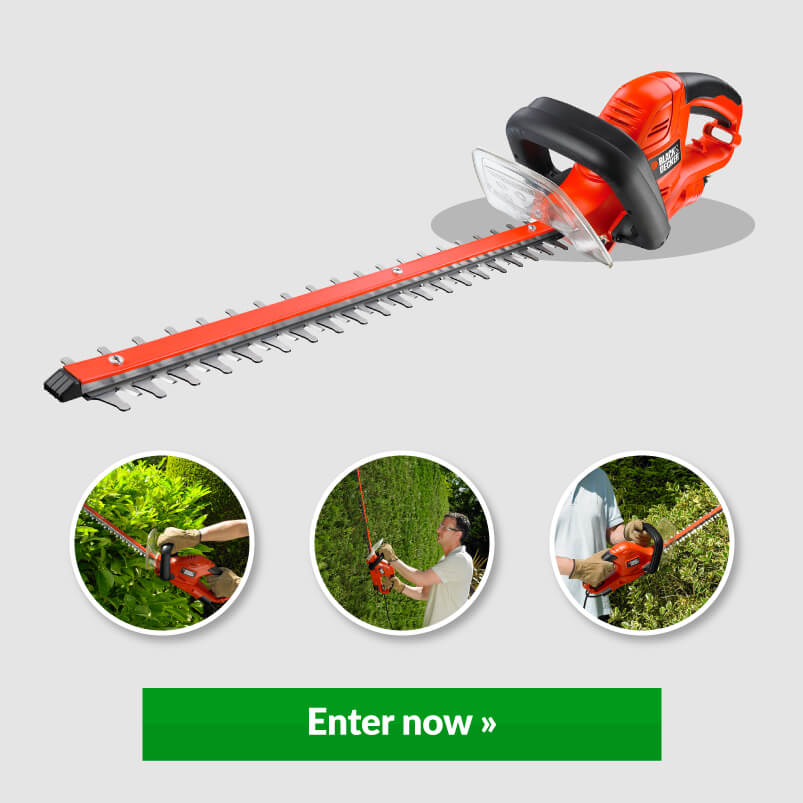 Image Of Hedge Trimmer With Enter Now Button