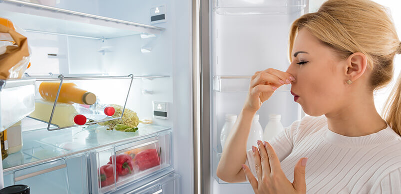 Woman Holding Nose By Open Fridge