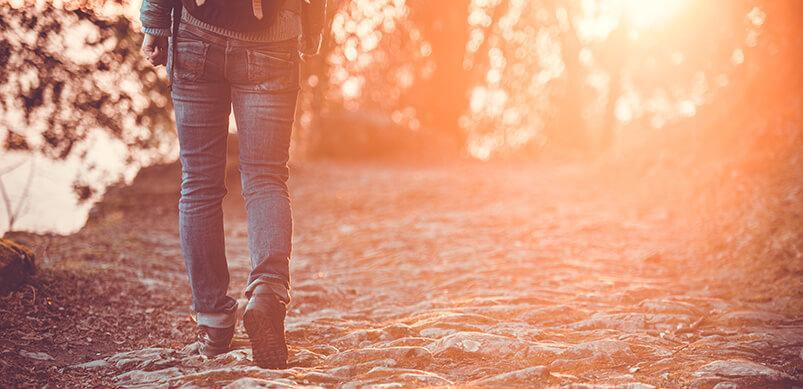 Man Walking Through Woods At Sunset