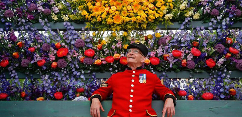 Chelsea Pensioner Admiring Flower Display