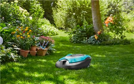 Lawnmower Next To Plant Bed