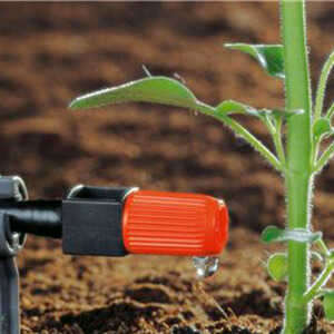 Micro-Drip Spraying Plant